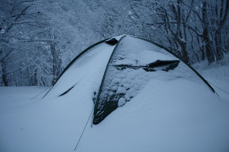 Селена Дельта - под снежным одеялом теплее.